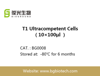 BGT1 Ultracompetent Cells